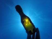 20200515_bottle.JPG