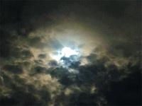20200622_曇りでも感じる太陽の強い光.jpg