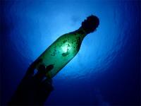 20200724_海底のmother.jpg