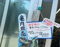 20210310_亀肉.jpg